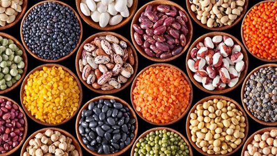 Croiser les légumineuses et les céréales pour des protéines végétales complètes