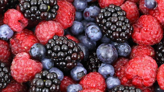 Les fruits rouges : une excellente source de flavonoïdes