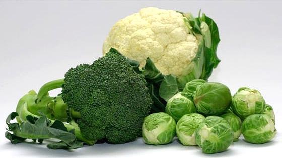 Chou, brocolis et autres crucifères : contre le vieillissement des cellules