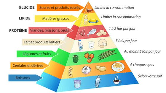La pyramide alimentaire, une façon d'avoir des repères simples