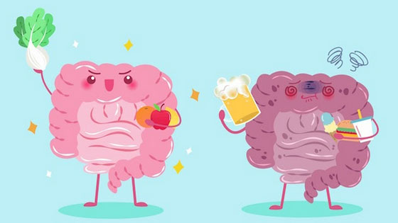 Pour un microbiote en pleine forme, soignez votre alimentation