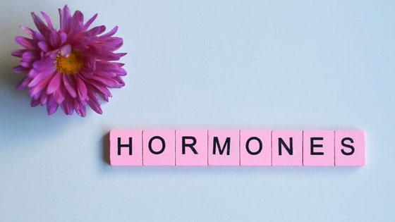 Les hormones sexuelles régulent aussi la présence des cellules graisseuses