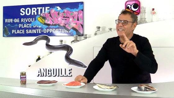 L'anguille : un des poissons les plus gras