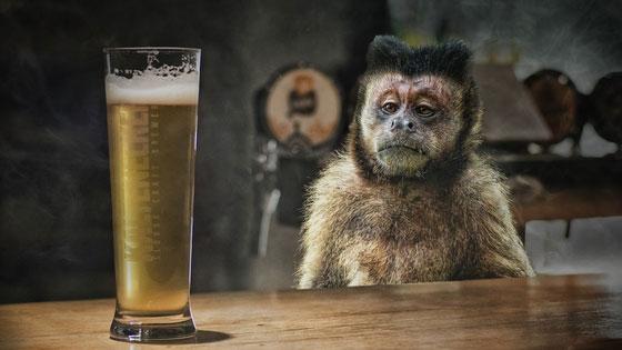 Boire un verre pendant la perte de poids, il faut y réfléchir à 2 fois !