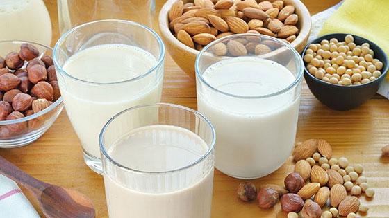 """Le terme de """"lait végétal"""" est inapproprié, ses apports sont vraiments différents"""