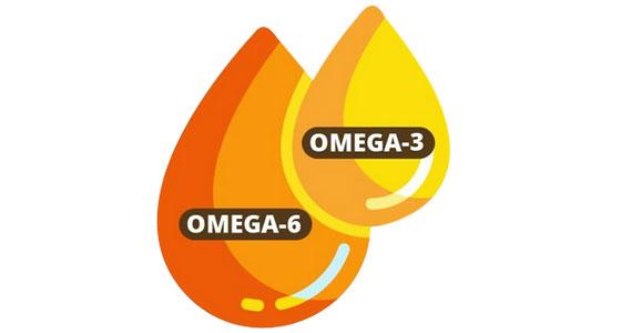 Trouver le bon équilibre Oméga-3 et Oméga-6