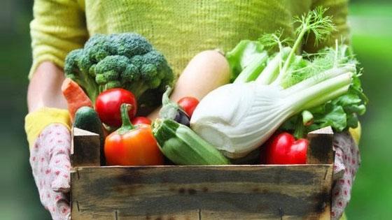 Consommez plus de fibres pour assurer votre apport en prébiotiques